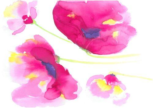 Harbour Poppies Caoimhe O'Dwyerwatercolour